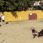 Los videos de las despedidas Oveja Negra